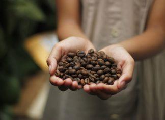 caffè-bellezza-costiera-caffe-design